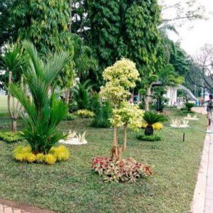 Jasa Taman Jogja
